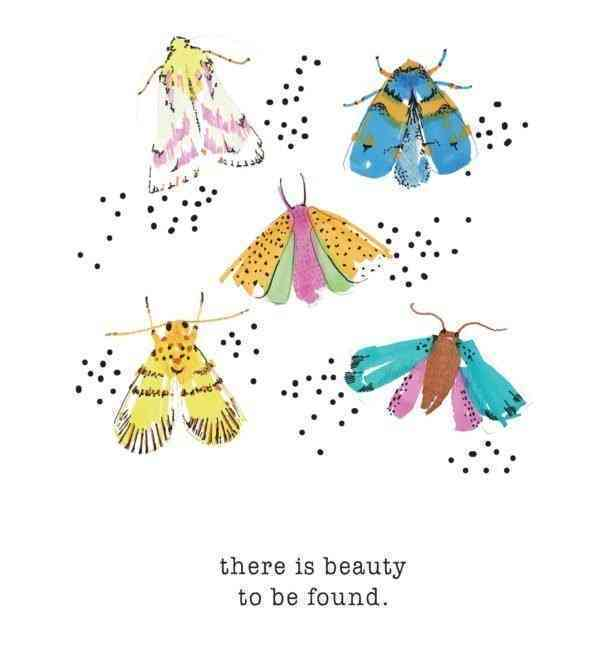 There is Beauty to Be found - MOTHS 2