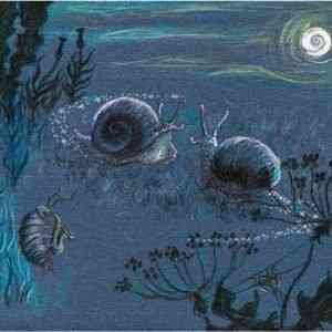 Snails by Moonlight