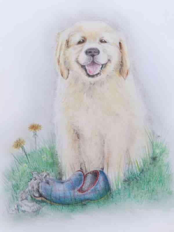 Trouble - Happy Dog