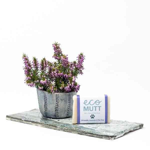 Citronella, tea tree and lavender dog soap bar