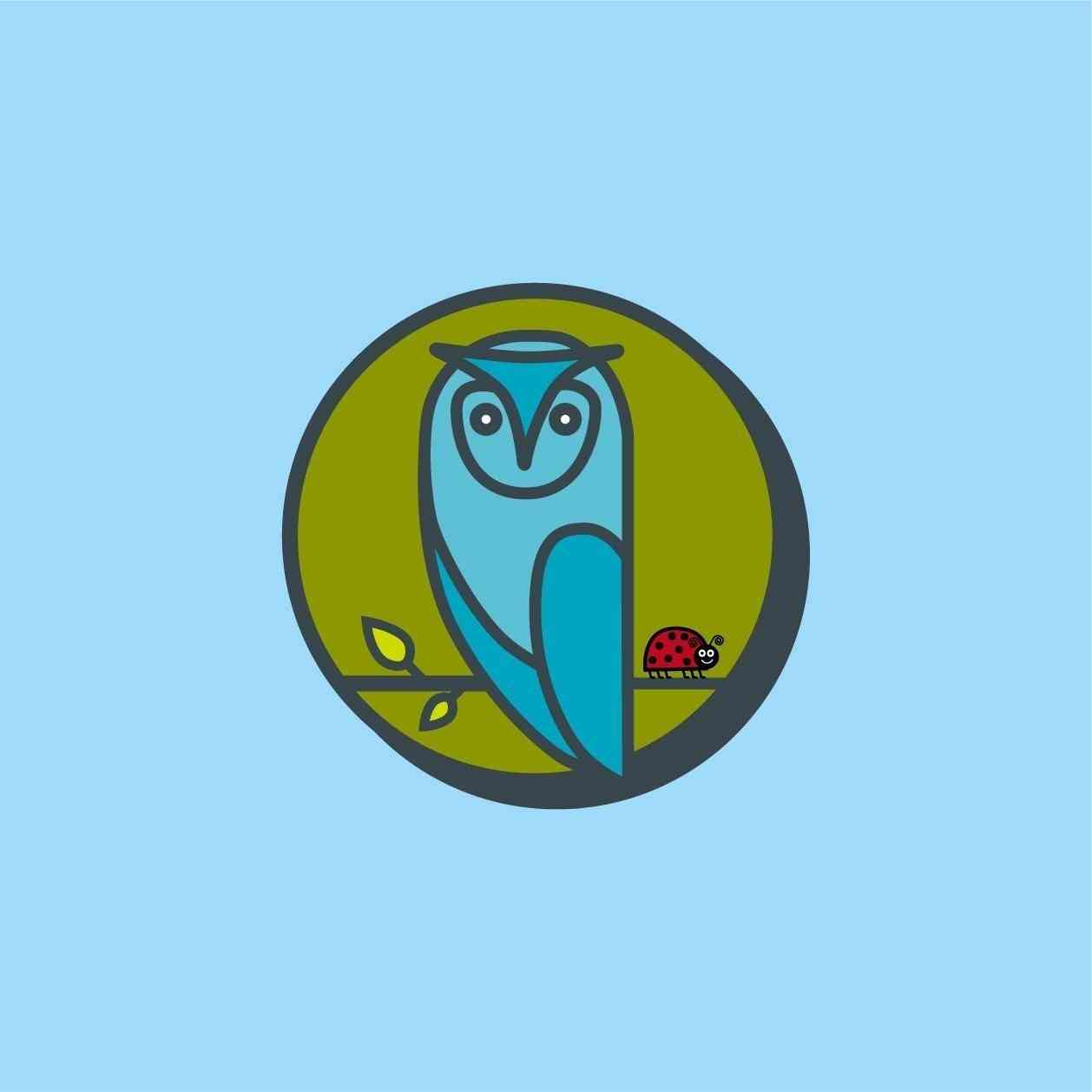 Home - OWL ICON LT BLUE