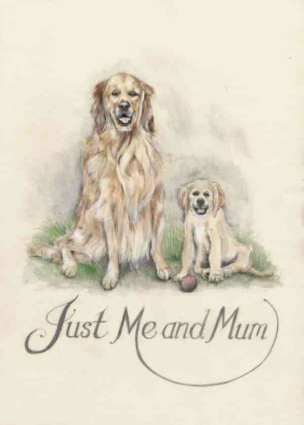 Just Me and Mum - denise kierans just me and mum