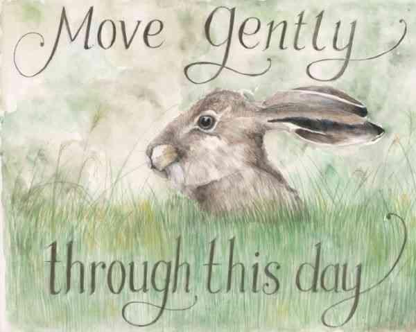 Move Gently - move gently