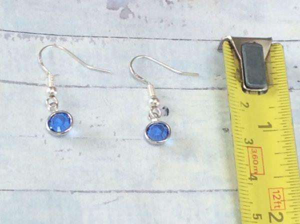 Silver Birthstone Earrings - 3DAC8542 0CB9 496F 8ACB 1F0CC0BCCB93