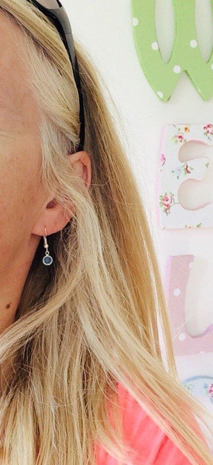Silver Birthstone Earrings - B4E4F6FB F280 45AB BE20 CF835E77D902