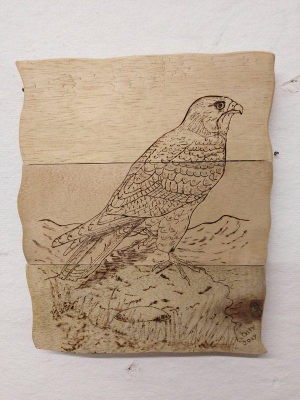 rustic wooden plaque of kite on the burren