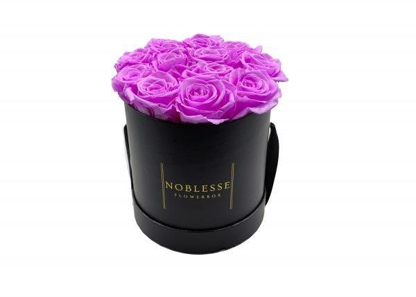 Noblesse Classic M - Light Purple Classic M front