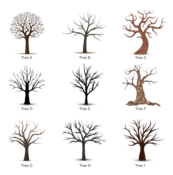 family trees for fingerprints