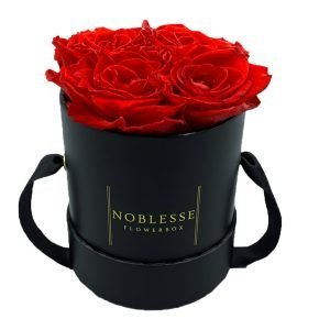 Noblesse Classic S