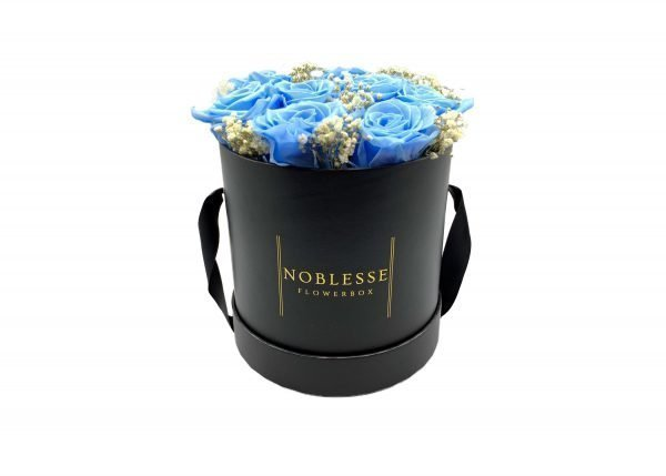 Noblesse Romance M - Blue Romance M front
