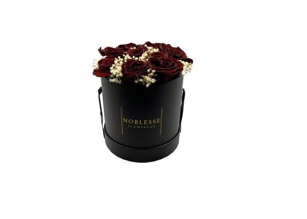 Noblesse Romance M - Bordeaux Romance M black front