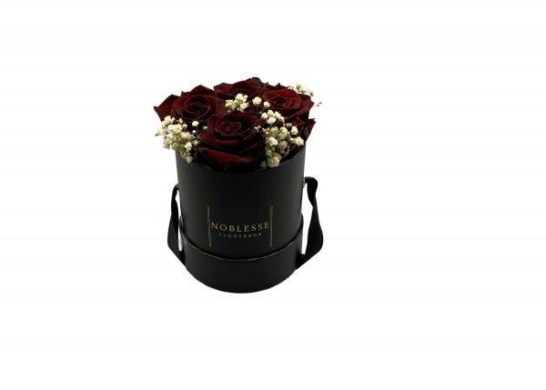Noblesse Romance S - Bordeaux Romance S black front