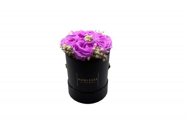 Noblesse Romance S - Light Purple Romance S black front