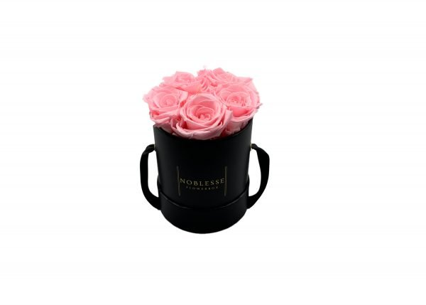 Noblesse Classic S - Rosa Classic S black front