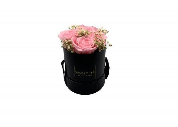 Noblesse Romance S - Rosa Romance S black front