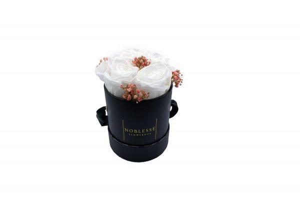 Noblesse Romance S - White Pink S Romance black box front