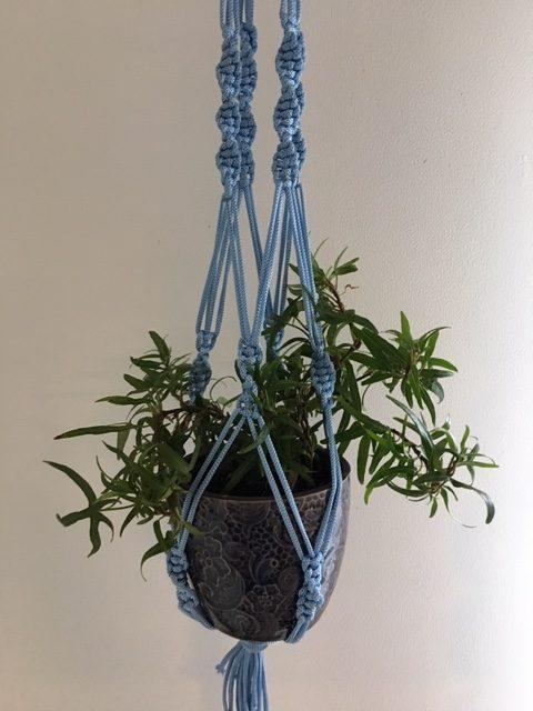 light blue macrame plant hanger