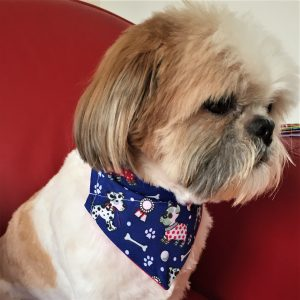 Dog and Bones Dog Bandana by Woof Stuff Ireland