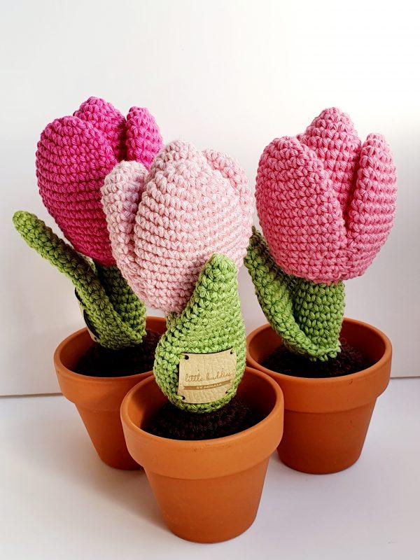 Crochet Tulip Flower in Pot