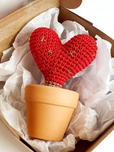 Cactus Heart in Pot