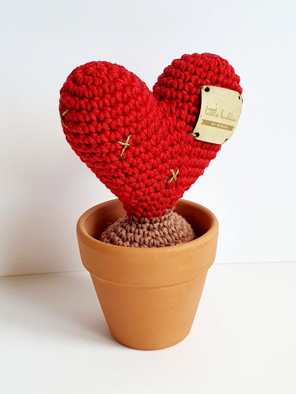 Cactus Heart in Pot - 20200406 174223 scaled