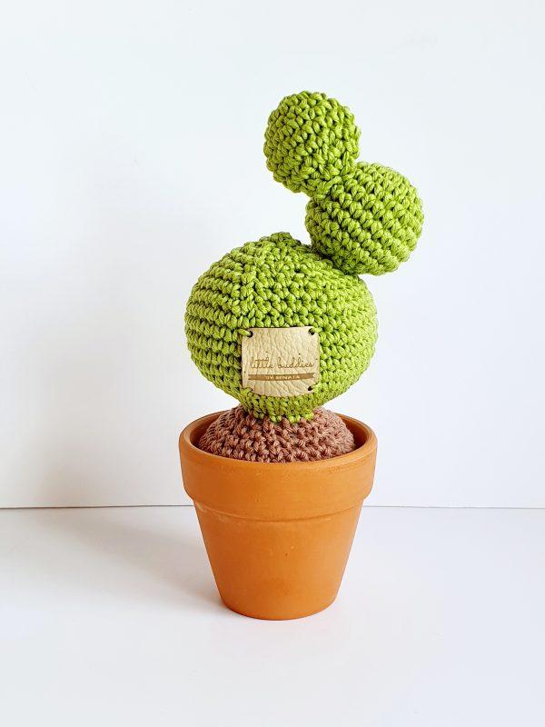 Cactus in Pot - 20200406 211818 scaled