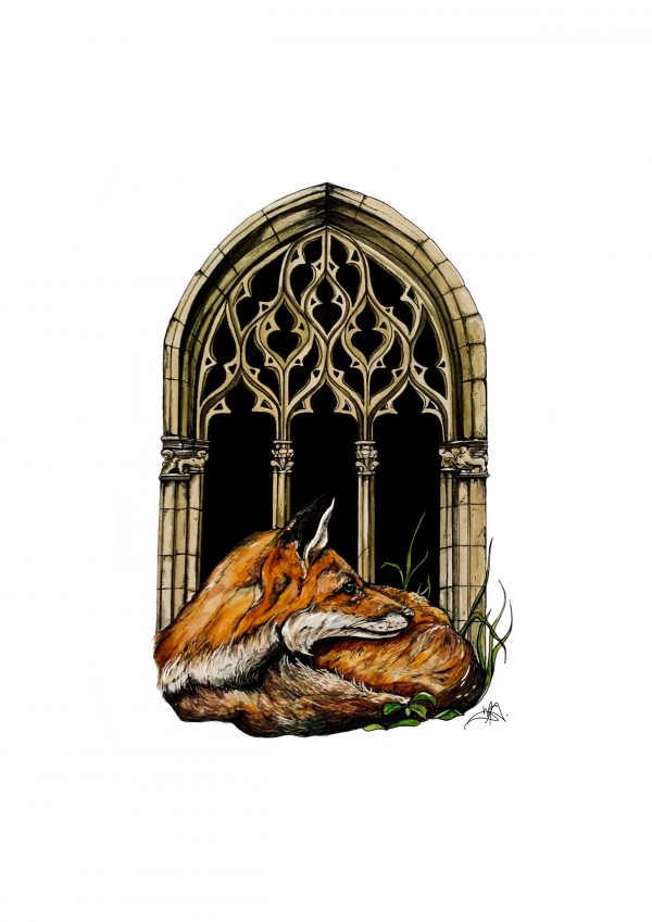 Fox and Window art print
