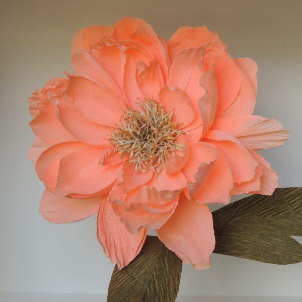 Peony crepe paper flower - DSCN6135 01 scaled