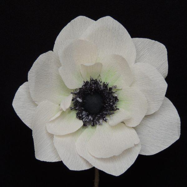 Anemone crepe paper flower - DSCN6142 01 scaled