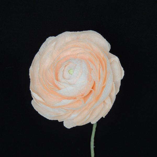 Ranunculus crepe paper flower - DSCN6166 01 scaled