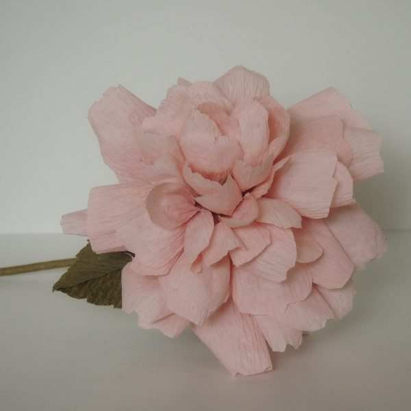 Koko loko rose crepe paper flower - DSCN6173 01 scaled
