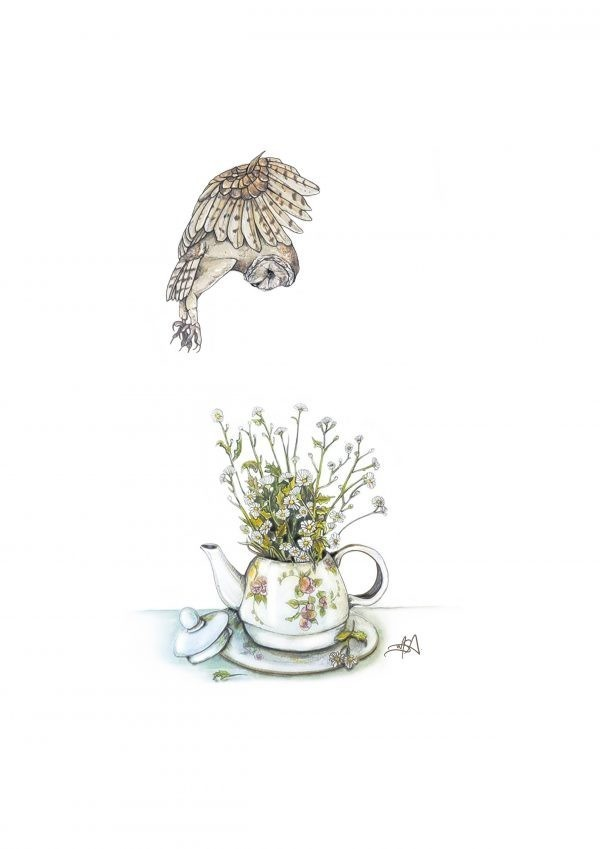 Put on the Owl kettle