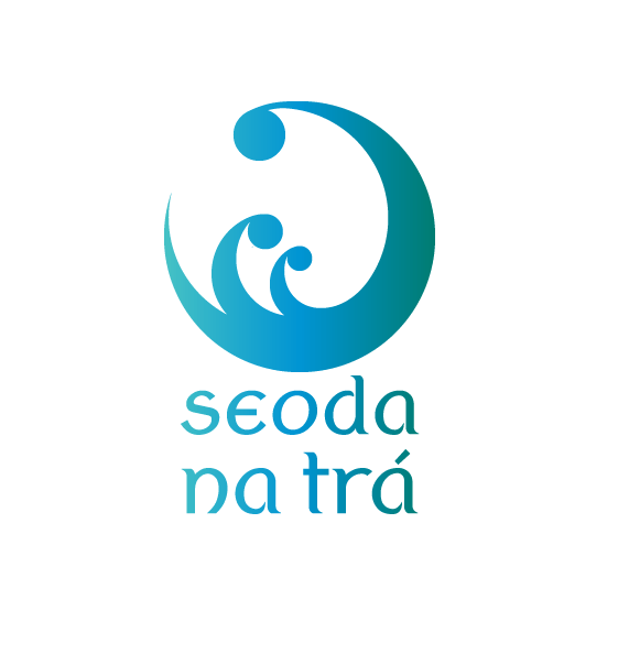 Home - Seoda 2020 white background