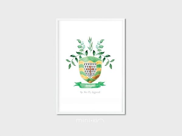 County Crest/Coat of Arms - Irish Made - 32 Counties of Ireland - WhiteFrameDonegal motto