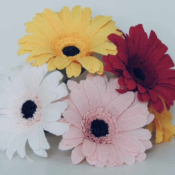 Gerbera crepe paper flower - fullsizeoutput 69 scaled