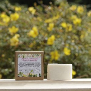 Argan Oil Solid Shampoo