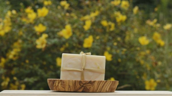 Lemongrass Fusion Soap Bar - 110321689 325943328568407 525424278199802883 n