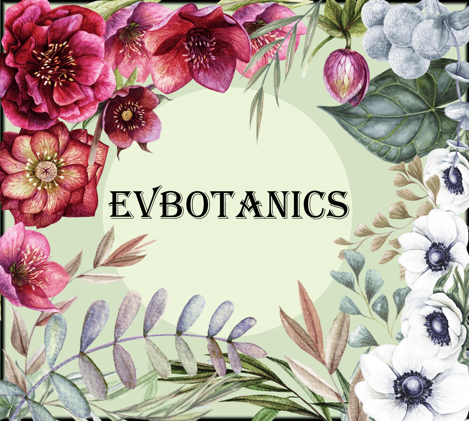 Home - EVBotanics logoB