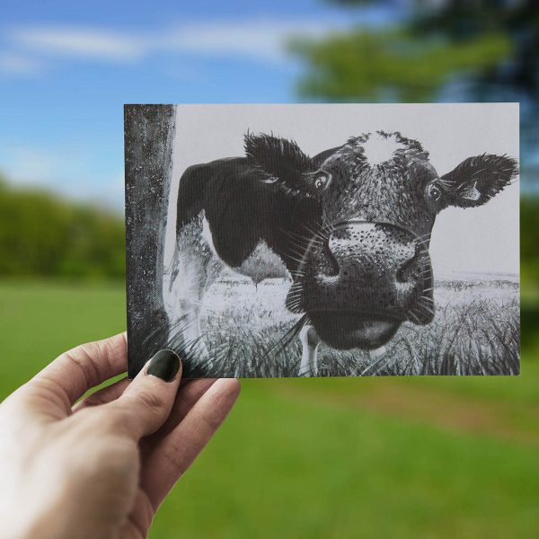 Peek A Moo - Greeting Card