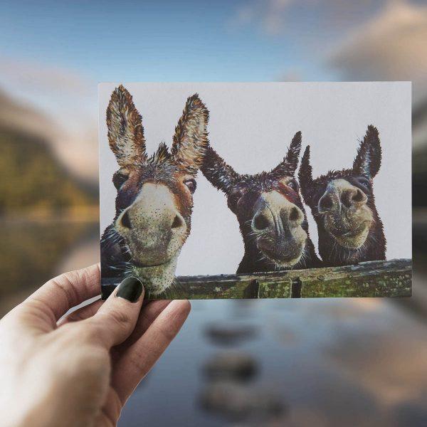 The Three Amigos - Greeting Card