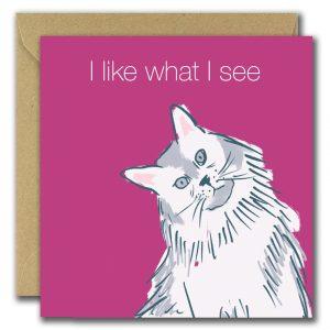 I Like What I See card