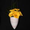 Hanging Vase