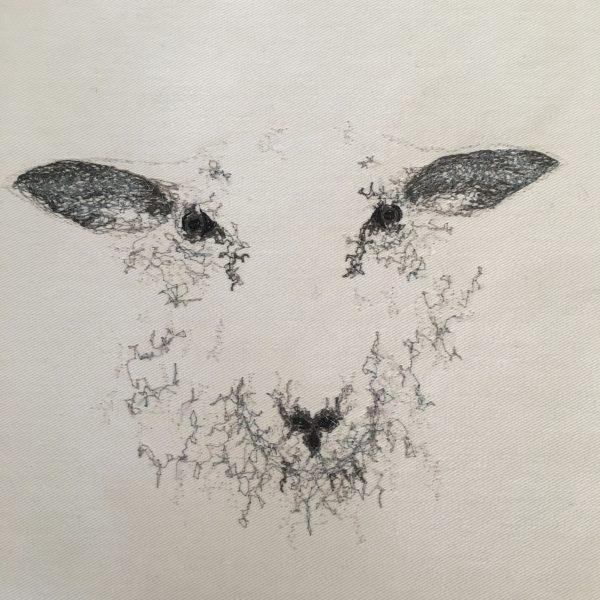 Embroidered Sheep Cushion - 9DAF4D9E 1882 4E01 813D FCF8EA490D83 1 201 a