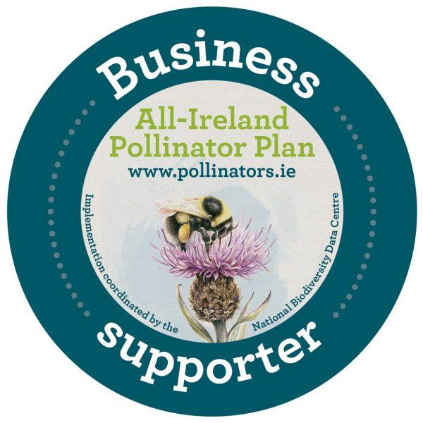 Irish Wildflower Seedbomb Gift Box - AIPP Business logo20433
