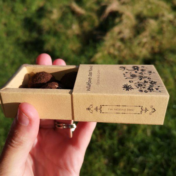 Irish Wildflower Seedbomb Gift Box