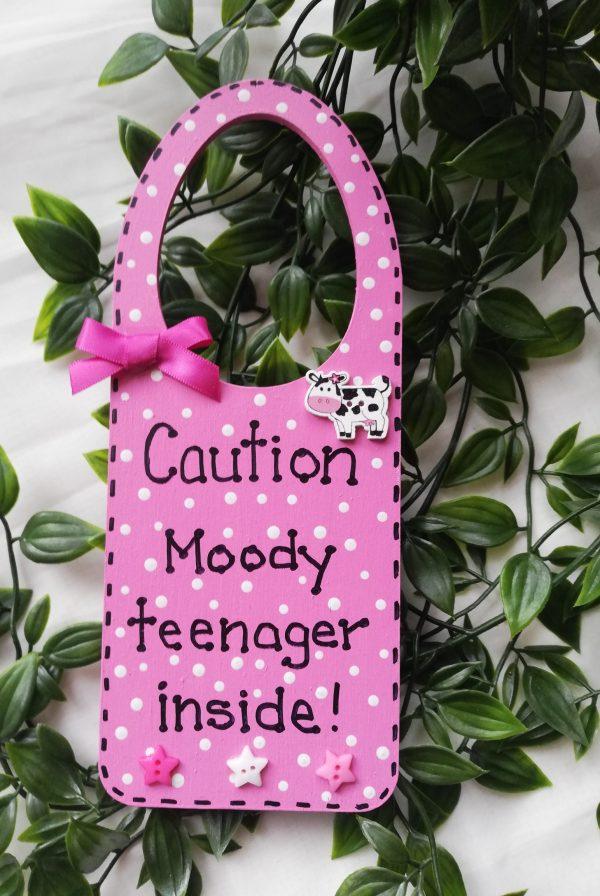Door Hanger - Moody Teen