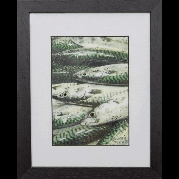 Atlantic Mackerel 2-original painting framed - Kellyhood.com Am2 ORIGINAL PAINTING