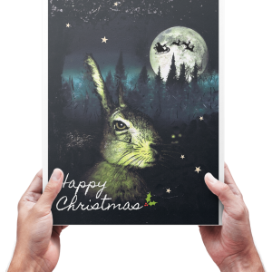 The Christmas Hare - The Greeting Card