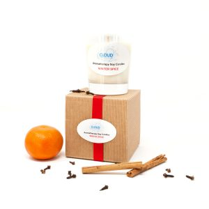 Winter Spice Aromatherapy Soy Candle