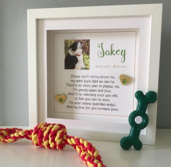 As Cute as a Button Pet memorial Frame